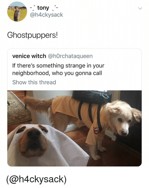 venice: -tony-7  @h4ckysack  Ghostpuppers!  venice witch @hOrchataqueen  If there's something strange in your  neighborhood, who you gonna call  Show this thread (@h4ckysack)