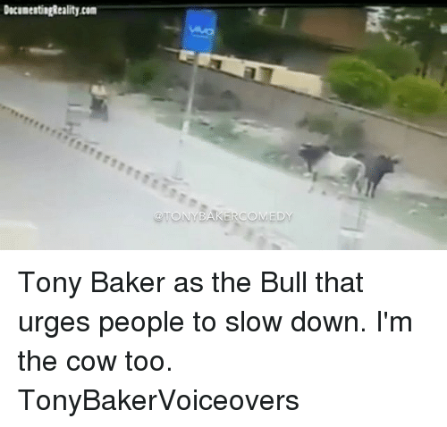 Bakerate: Tony Baker as the Bull that urges people to slow down. I'm the cow too. TonyBakerVoiceovers