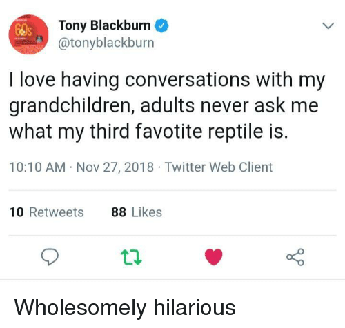 Love, Twitter, and Hilarious: Tony Blackburn  @tonyblackburn  I love having conversations with my  grandchildren, adults never ask me  what my third favotite reptile is.  10:10 AM Nov 27, 2018 Twitter Web Client  10 Retweets  88 Likes Wholesomely hilarious