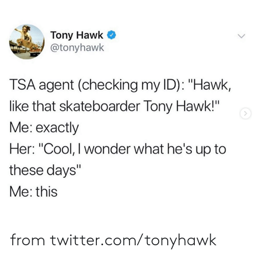 "hawk: Tony Hawk  @tonyhawk  TSA agent (checking my ID): ""Hawk,  like that skateboarder Tony Hawk!""  Me: exactly  Her: ""Cool, I wonder what he's up to  these days""  Me: this from twitter.com/tonyhawk"