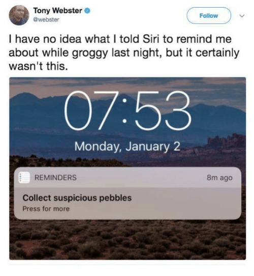 reminders: Tony Webster  @webster  Follow  I have no idea what I told Siri to remind me  about while groggy last night, but it certainly  wasn't this.  07:53  Monday, January 2  REMINDERS  8m ago  Collect suspicious pebbles  Press for more