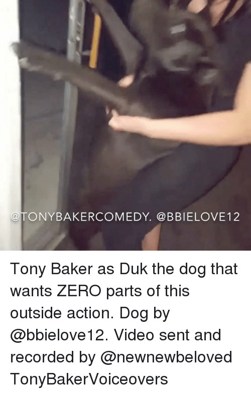 zeroes: TONYBAKERCOMEDY. @BBIELOVE12 Tony Baker as Duk the dog that wants ZERO parts of this outside action. Dog by @bbielove12. Video sent and recorded by @newnewbeloved TonyBakerVoiceovers