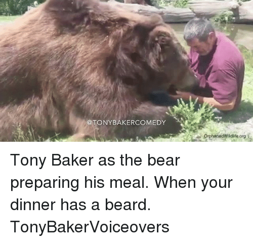 Bakerate: @TONYBAKERCOMEDY  org Tony Baker as the bear preparing his meal. When your dinner has a beard. TonyBakerVoiceovers