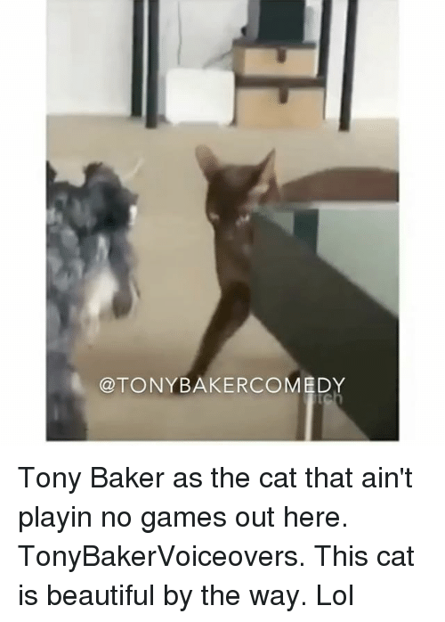 Bakerate: @TONYBAKERCOMEDY Tony Baker as the cat that ain't playin no games out here. TonyBakerVoiceovers. This cat is beautiful by the way. Lol