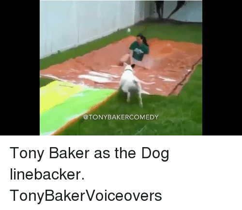 Bakerate: @TONYBAKERCOMEDY Tony Baker as the Dog linebacker. TonyBakerVoiceovers
