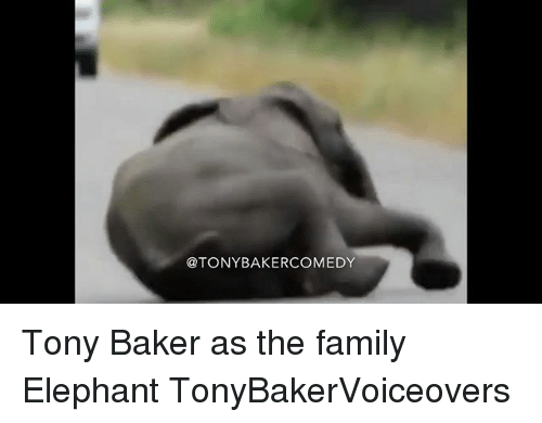 Bakerate: @TONYBAKERCOMEDY Tony Baker as the family Elephant TonyBakerVoiceovers