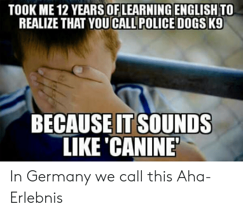 police dogs: TOOK ME 12 YEARSOFLEARNING ENGLISH TO  REALIZE THAT YOU CALL POLICE DOGS K9  BECAUSEIT SOUNDS  LIKE CANINE In Germany we call this Aha- Erlebnis