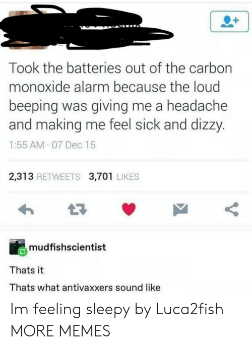 Dank, Memes, and Target: Took the batteries out of the carbon  monoxide alarm because the loud  beeping was giving me a headache  and making me feel sick and dizzy.  1:55 AM 07 Dec 15  2,313 RETWEETS 3,701 LIKES  mudfishscientist  Thats it  Thats what antivaxxers sound like Im feeling sleepy by Luca2fish MORE MEMES