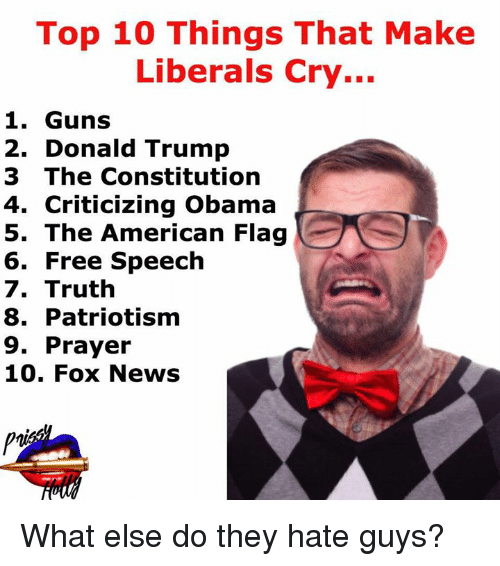 Liberal Crying: Top 10 Things That Make  Liberals Cry...  1. Guns  2. Donald Trump  3 The Constitution  4. Criticizing Obama  5. The American Flag  6. Free Speech  7. Truth  8. Patriotism  9. Prayer  10. Fox News What else do they hate guys?