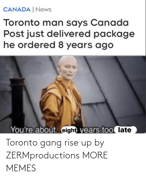 Toronto: Toronto gang rise up by ZERMproductions MORE MEMES