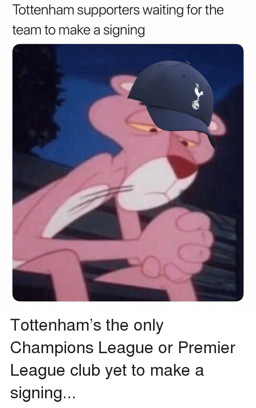 Club, Memes, and Premier League: Tottenham supporters waiting for the  team to make a signing Tottenham's the only Champions League or Premier League club yet to make a signing...
