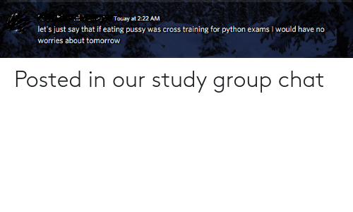 Group Chat, Pussy, and Chat: Touay at 2:22 AM  let's just say that if eating pussy was cross training for python exams I would have no  worries about tomorrow Posted in our study group chat