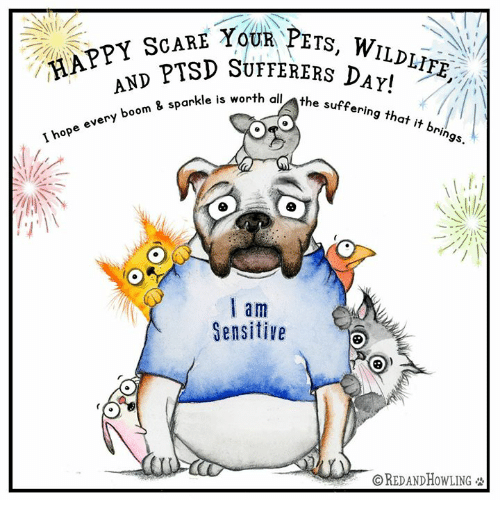 Memes, Scare, and Happy: tovii?ETS, WILDLIFE..  HAPPY ScA  PPSD SUTFERERS DA!  SCARE Y  AND PTSID  ry boom & sparkle is worth  th all the suffering that it bri  th  a m  Sensitive  ⓒREDANDHOWLING