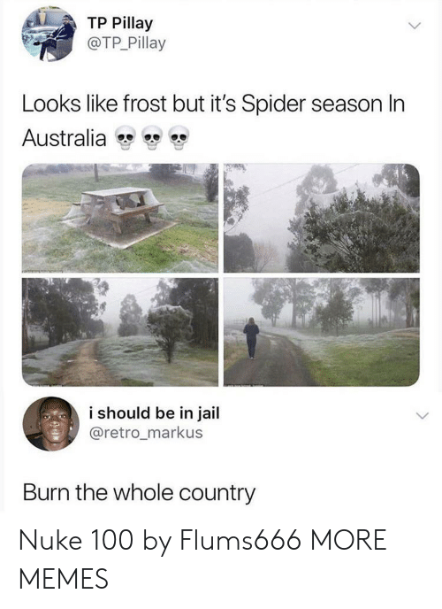 Dank, Jail, and Memes: TP Pillay  @TP Pillay  Looks like frost but it's Spider season In  Australia  i should be in jail  @retro_markus  Burn the whole country Nuke 100 by Flums666 MORE MEMES