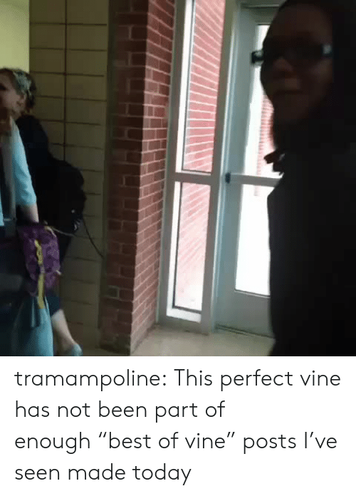 """Not Been: tramampoline:  This perfect vine has not been part of enough""""best of vine"""" posts I've seen made today"""