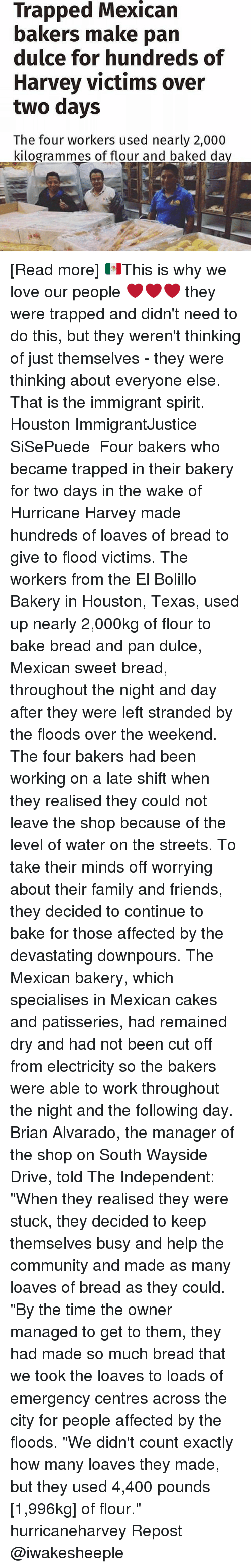 "the weekenders: Trapped Mexican  bakers make pan  dulce for hundreds of  Harvey victims over  two days  The four workers used nearly 2,000  kilogrammes of flour and baked da [Read more] 🇲🇽This is why we love our people ❤❤❤ they were trapped and didn't need to do this, but they weren't thinking of just themselves - they were thinking about everyone else. That is the immigrant spirit. Houston ImmigrantJustice SiSePuede ・・・ Four bakers who became trapped in their bakery for two days in the wake of Hurricane Harvey made hundreds of loaves of bread to give to flood victims. The workers from the El Bolillo Bakery in Houston, Texas, used up nearly 2,000kg of flour to bake bread and pan dulce, Mexican sweet bread, throughout the night and day after they were left stranded by the floods over the weekend. The four bakers had been working on a late shift when they realised they could not leave the shop because of the level of water on the streets. To take their minds off worrying about their family and friends, they decided to continue to bake for those affected by the devastating downpours. The Mexican bakery, which specialises in Mexican cakes and patisseries, had remained dry and had not been cut off from electricity so the bakers were able to work throughout the night and the following day. Brian Alvarado, the manager of the shop on South Wayside Drive, told The Independent: ""When they realised they were stuck, they decided to keep themselves busy and help the community and made as many loaves of bread as they could. ""By the time the owner managed to get to them, they had made so much bread that we took the loaves to loads of emergency centres across the city for people affected by the floods. ""We didn't count exactly how many loaves they made, but they used 4,400 pounds [1,996kg] of flour."" hurricaneharvey Repost @iwakesheeple"