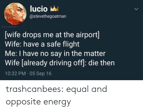 img: trashcanbees:  equal and opposite energy