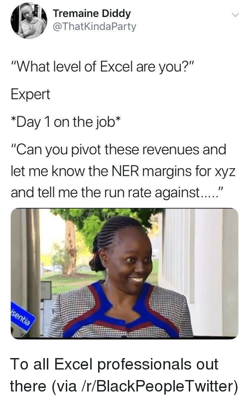 """xyz: Tremaine Diddy  @ThatKindaParty  """"What level of Excel are you?""""  Expert  *Day 1 on the job*  """"Can you pivot these revenues and  let me know the NER margins for xyz  and tell me the run rate against...."""" To all Excel professionals out there (via /r/BlackPeopleTwitter)"""