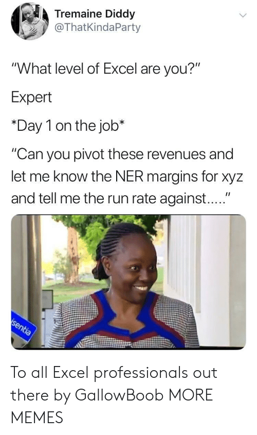 """xyz: Tremaine Diddy  @ThatKindaParty  """"What level of Excel are you?""""  Expert  *Day 1 on the job*  """"Can you pivot these revenues and  let me know the NER margins for xyz  and tell me the run rate against...."""" To all Excel professionals out there by GallowBoob MORE MEMES"""