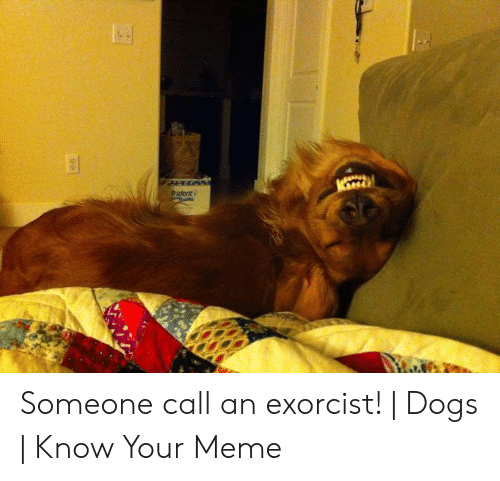 Exorcism Meme: Trident Someone call an exorcist!   Dogs   Know Your Meme