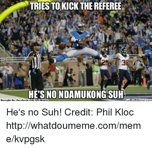 Facebook, Meme, and Nfl: TRIES TOKICK THE REFEREE  HE'S NO NDAMUKONG SUH  Brought By Facebook.  com /NFLMemez He's no Suh! Credit: Phil Kloc  http://whatdoumeme.com/meme/kvpgsk