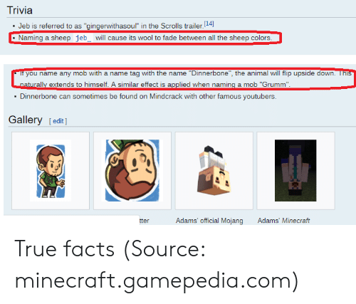Trivia Jeb Is Referred to as Gingerwithasoul in the Scrolls