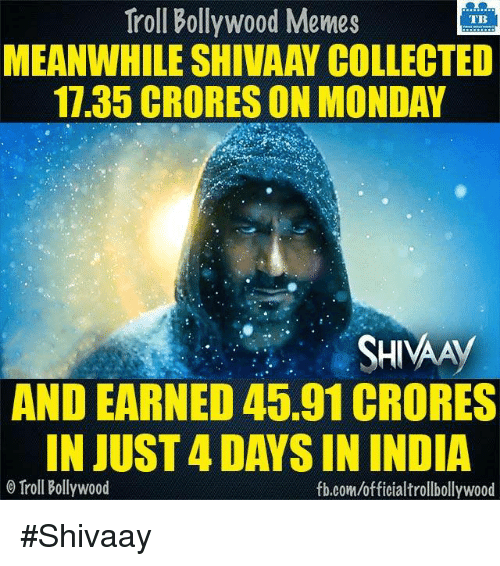 Memes, Mondays, and Troll: Troll Bollywood Memes  TB  MEANWHILE SHIVAAY COLLECTED  11.35 CRORES ON MONDAY  SHIVAAy  AND EARNED 45.91 CRORES  IN JUST4DAYSIN INDIA  Troll Bollywood  fb.com/officialtrollbollywood #Shivaay