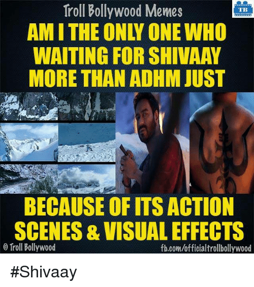 Memes, Troll, and Trolling: Troll Bollywood Memes  TB  WAITING FOR SHIVAAY  MORE THAN ADHM JUST  BECAUSE OF ITS ACTION  SCENES &VISUAL EFFECTS  Troll Bollywood  fb.com/officialtrollbollywood #Shivaay