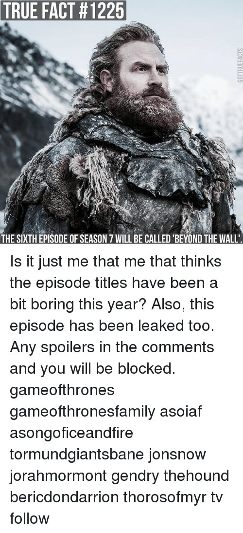 Memes, True, and Asoiaf: TRUE  FACT #1225  THE SIXTH EPISODE OF SEASON 7 WILL BE CALLED 'BEYOND THE WALL Is it just me that me that thinks the episode titles have been a bit boring this year? Also, this episode has been leaked too. Any spoilers in the comments and you will be blocked. gameofthrones gameofthronesfamily asoiaf asongoficeandfire tormundgiantsbane jonsnow jorahmormont gendry thehound bericdondarrion thorosofmyr tv follow