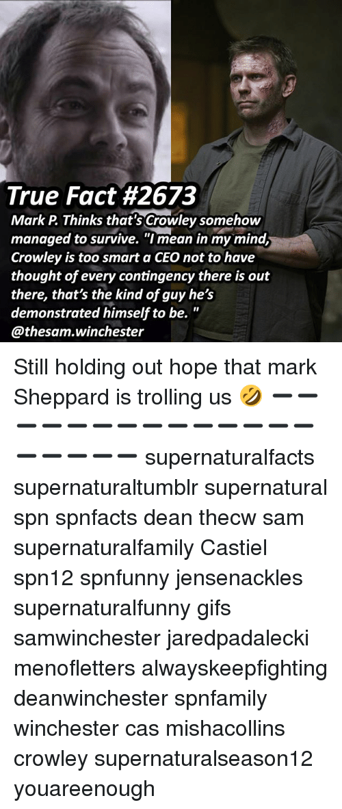 """Too Smart: True Fact #2673  Mark P Thinks that's Crowley somehow  managed to survive. """"I mean in my mind,  Crowley is too smart a CEO not to have  thought of every contingency there is out  there, that's the kind of guy he's  demonstrated himself to be.  @thesam.winchester Still holding out hope that mark Sheppard is trolling us 🤣 ➖➖➖➖➖➖➖➖➖➖➖➖➖➖➖➖➖➖➖ supernaturalfacts supernaturaltumblr supernatural spn spnfacts dean thecw sam supernaturalfamily Castiel spn12 spnfunny jensenackles supernaturalfunny gifs samwinchester jaredpadalecki menofletters alwayskeepfighting deanwinchester spnfamily winchester cas mishacollins crowley supernaturalseason12 youareenough"""