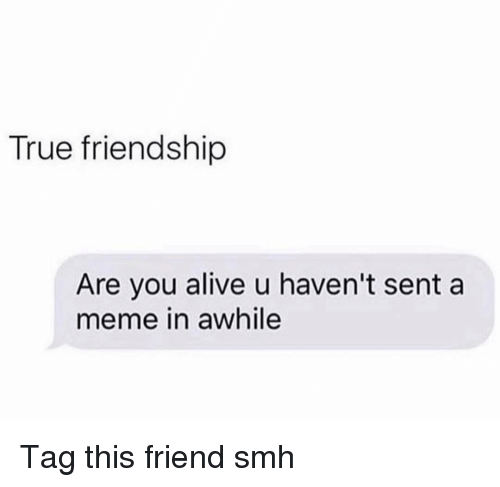 true friendship: True friendship  Are you alive u haven't sent a  meme in awhile Tag this friend smh