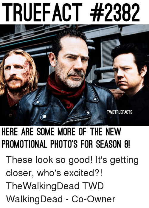 Memes, Some More, and Good: TRUEFACT #2382  TWDTRUEFACTS  HERE ARE SOME MORE OF THE NEW  PROMOTIONAL PHOTO'S FOR SEASON 8 These look so good! It's getting closer, who's excited?! TheWalkingDead TWD WalkingDead - Co-Owner
