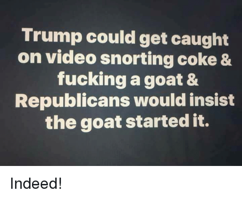 Fucking, Goat, and Indeed: Trump could get caught  on video snorting coke &  fucking a goat &  Republicans would insist  the goat started it. Indeed!