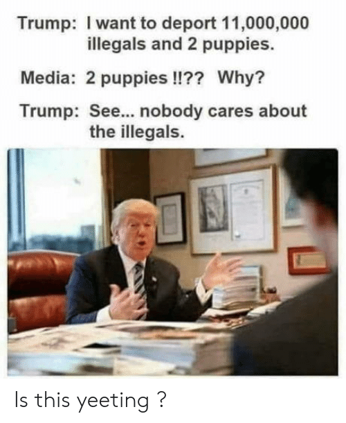 see nobody cares: Trump: I want to deport 11,000,000  illegals and 2 puppies.  Media: 2 puppies !!?? Why?  Trump: See... nobody cares about  the illegals. Is this yeeting ?