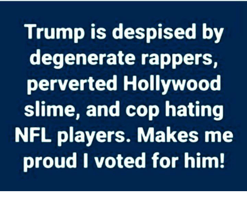 nfl players: Trump is despised by  degenerate rappers,  perverted Hollywood  slime, and cop hating  NFL players. Makes me  proud I voted for him!