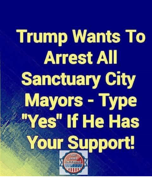 "Memes, Trump, and 🤖: Trump Wants To  Arrest AI  Sanctuary City  Mayors Type  Yes"" if He Has  Your Support!  UNLEASHED"