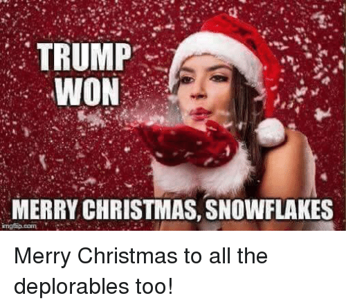 christmas memes and merry christmas trump won merry christmas snowflakes ingfip - Merry Christmas Meme Generator