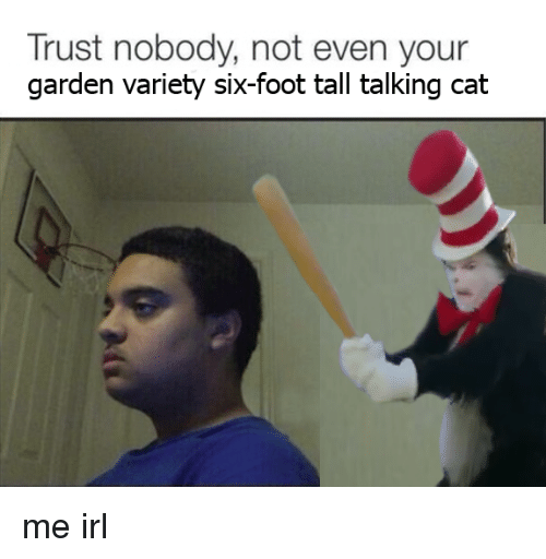 Irl, Me IRL, and Trust Nobody: Trust nobody, not even your  garden variety six-foot tall talking cat me irl