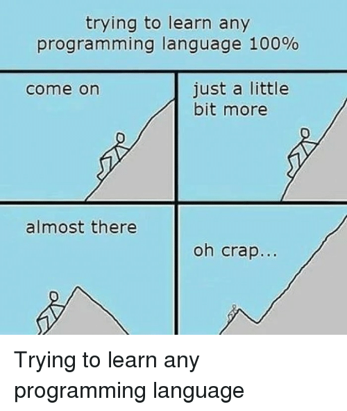 just a little bit: trying to learn any  progra m ming language 100%  just a little  bit more  come on  almost there  oh crap... Trying to learn any programming language