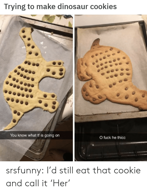 Cookies, Dinosaur, and Tumblr: Trying to make dinosaur cookies  You know what tf is going on  O fuck he thicc srsfunny:  I'd still eat that cookie and call it 'Her'