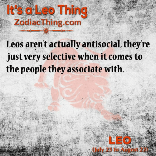Antisocial: t's aLeo Thing  ZodiacThing.com  Leos aren't actually antisocial, they're  just very selective when it comes to  the people they associate with.  SRE  123RF  LEO  July 23 to August 2  243