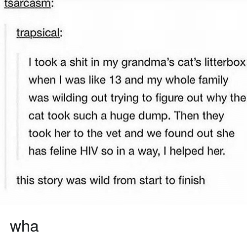 Wilding: tsarcasm:  trapsical:  I took a shit in my grandma's cat's litterbox  when I was like 13 and my whole family  was wilding out trying to figure out why the  cat took such a huge dump. Then they  took her to the vet and we found out she  has feline HIV so in a way, I helped her.  this story was wild from start to finish wha