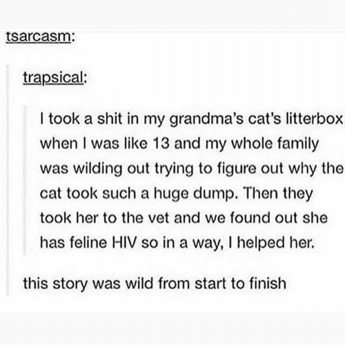 Wilding: tsarcasm:  trapsical:  I took a shit in my grandma's cat's litterbox  when I was like 13 and my whole family  was wilding out trying to figure out why the  cat took such a huge dump. Then they  took her to the vet and we found out she  has feline HIV so in a way, I helped her.  this story was wild from start to finish