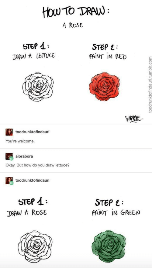 But How: ttou Tο TAN:  A RoSE  STEP  STEP L  FAINT IN RED  DRAW A LETTUCE  toodrunktofindaurl  You're welcome.  alorabora  Okay. But how do you draw lettuce?  toodrunktofindaurl  STEP  STEP  FAINT IN GREEN  DRAW A ROSE  toodrunktofindaurl.tumblr.com