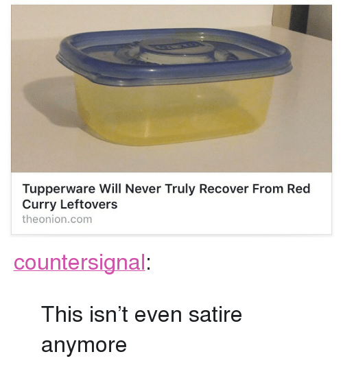 """Target, Tumblr, and Blog: Tupperware Will Never Truly Recover From Red  Curry Leftovers  theonion.com <p><a href=""""http://countersignal.tumblr.com/post/161179598294/this-isnt-even-satire-anymore"""" class=""""tumblr_blog"""" target=""""_blank"""">countersignal</a>:</p> <blockquote><p>This isn't even satire anymore</p></blockquote>"""
