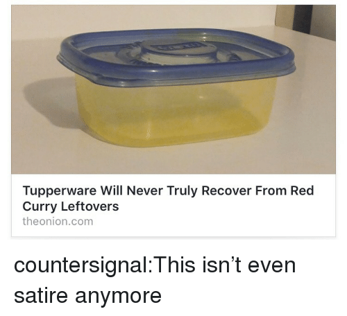 satire: Tupperware Will Never Truly Recover From Red  Curry Leftovers  theonion.com countersignal:This isn't even satire anymore