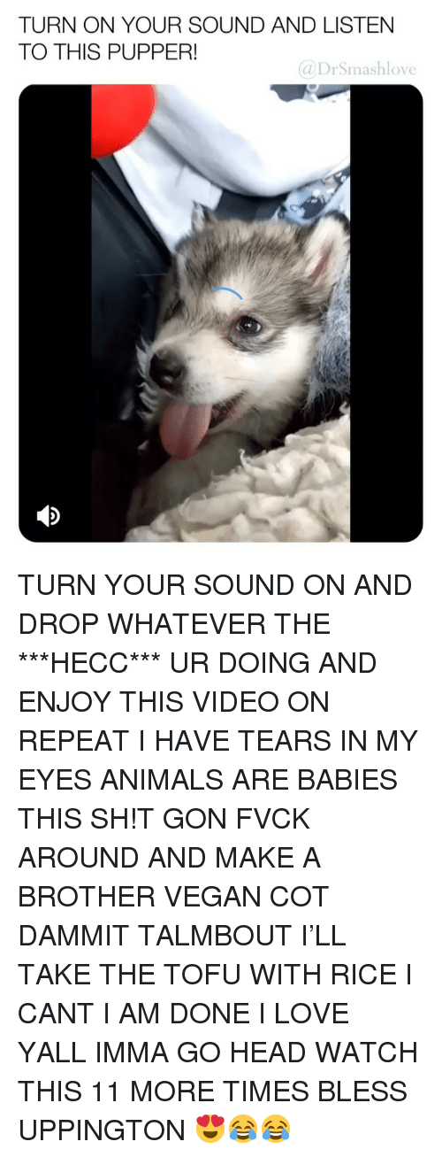 Animals, Head, and Love: TURN ON YOUR SOUND AND LISTEN  TO THIS PUPPER!  @DrSmashlove TURN YOUR SOUND ON AND DROP WHATEVER THE ***HECC*** UR DOING AND ENJOY THIS VIDEO ON REPEAT I HAVE TEARS IN MY EYES ANIMALS ARE BABIES THIS SH!T GON FVCK AROUND AND MAKE A BROTHER VEGAN COT DAMMIT TALMBOUT I'LL TAKE THE TOFU WITH RICE I CANT I AM DONE I LOVE YALL IMMA GO HEAD WATCH THIS 11 MORE TIMES BLESS UPPINGTON 😍😂😂