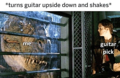 Guitar, Down, and Shakes: *turns guitar upside down and shakes*  guitar  me  pick