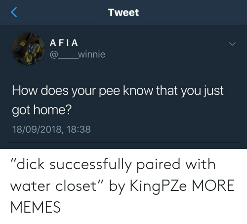 """Closets: Tweet  AFIA  @ winnie  How does your pee know that you just  got home?  18/09/2018, 18:38 """"dick successfully paired with water closet"""" by KingPZe MORE MEMES"""