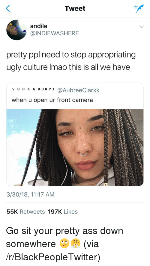 Your Pretty: Tweet  andile  @INDIEWASHERE  pretty ppl need to stop appropriating  ugly culture Imao this is all we have  v O DKA BURP S @AubreeClarkk  when u open ur front camera  3/30/18, 11:17 AM  55K Retweets 197K Likes <p>Go sit your pretty ass down somewhere 🙄😤 (via /r/BlackPeopleTwitter)</p>